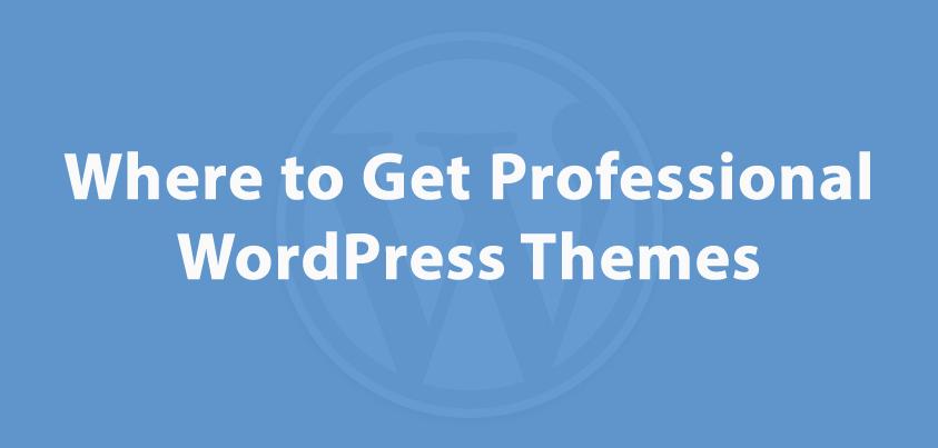 Premium WordPress Theme Providers
