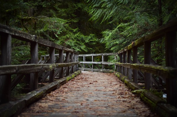 A footbridge deep in the Mount Baker Wilderness. Washington.