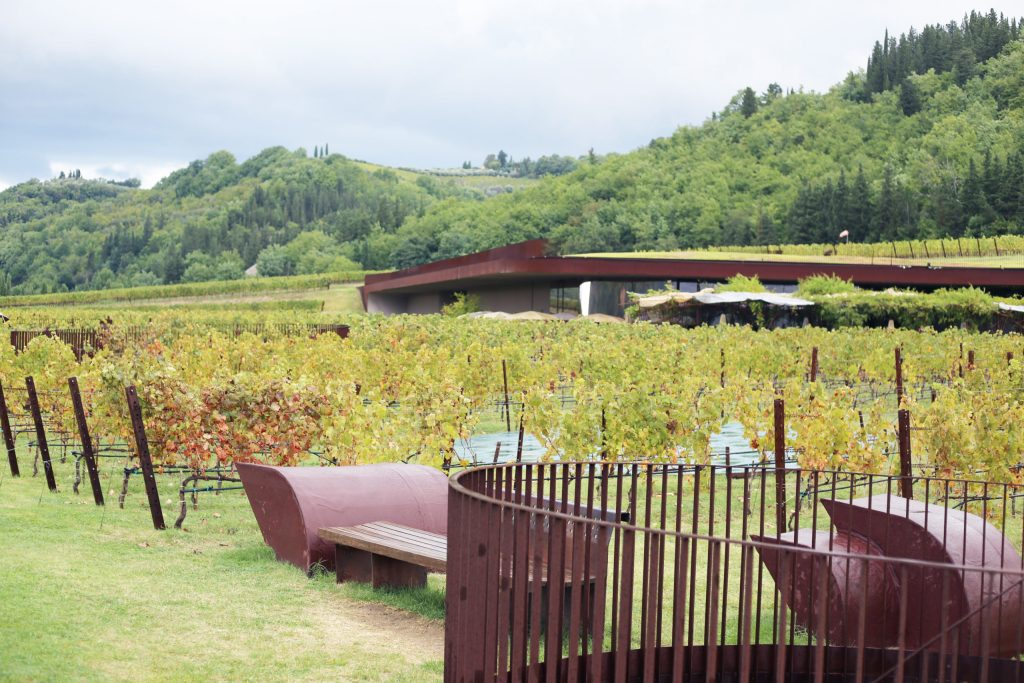 The winery estate
