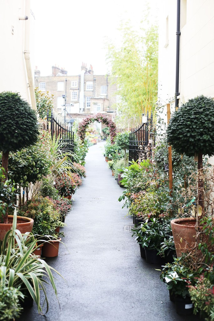 The gorgeous Clifton Nurseries entry in Maida Vale