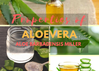 What are the Properties of Aloevera (Aloe Barbadensis Miller) ?