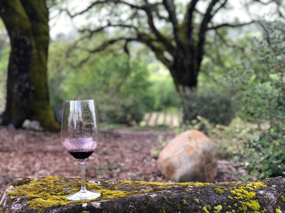 wineglass-1