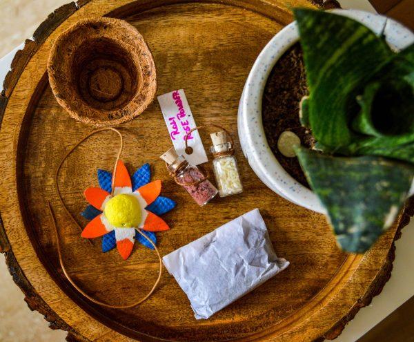 Seed Rakhi Box Contents