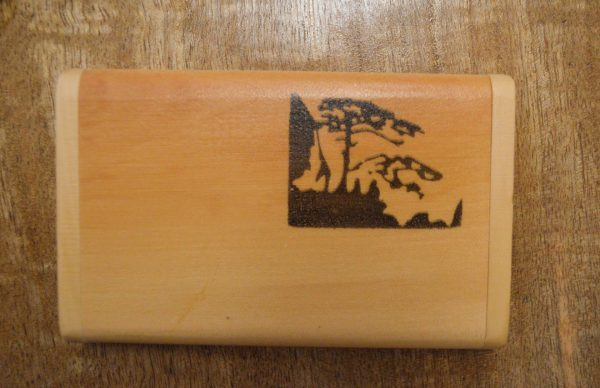 Buy bamboo comb