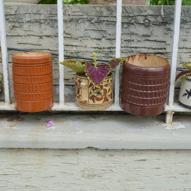 Bamboo planters buy india