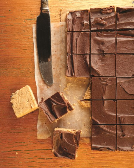 The whole chocolate and peanut butter thing is pretty compelling.