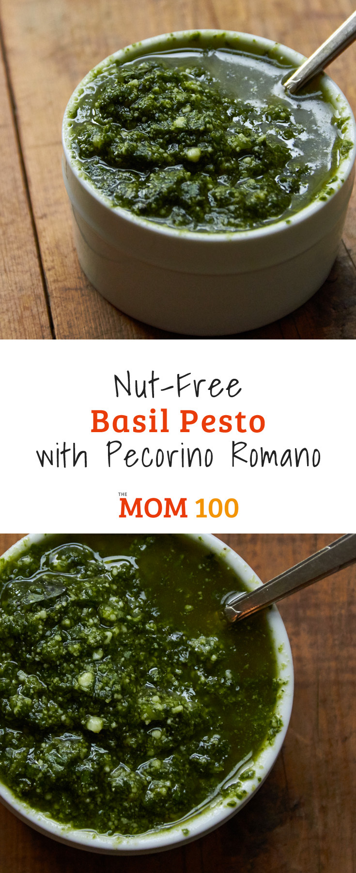 This Nut-Free Basil Pesto with Pecorino Romano recipe is for all the basil pesto lovers out there, and so easy to make in the food processor