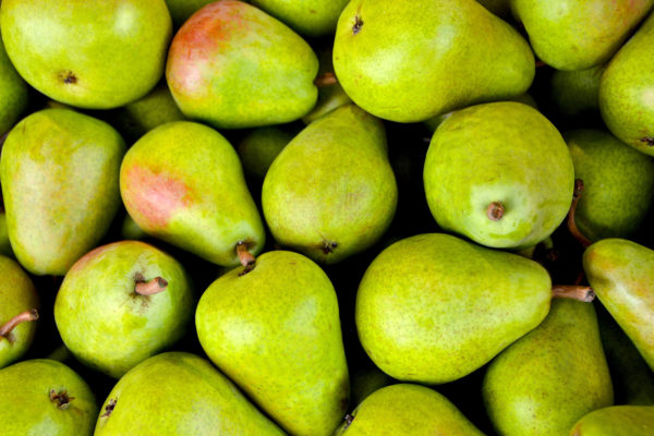 How Do You Know When a Pear is Ripe? / Photo by PIRO4D / pixabay.com