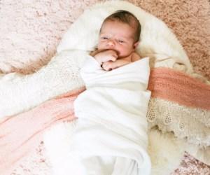 Logan Newborn Pics