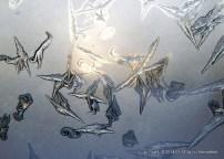 Frost figures in flight