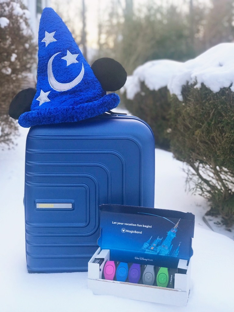 Disney Carry On Bag Essentials