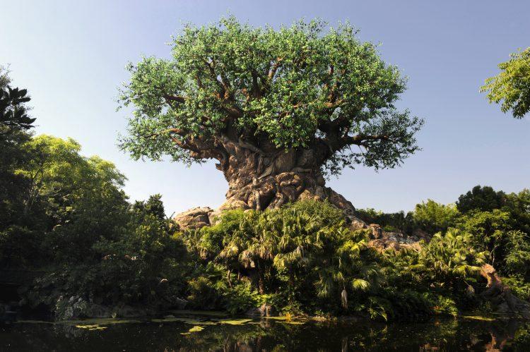 Disney's Animal Kingdom Celebrates 20th Anniversary