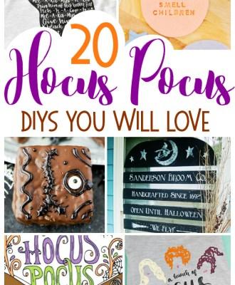 20 Hocus Pocus DIYS You Will Love