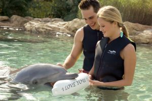 Discovery Cove Offers Valentine's Day Packages