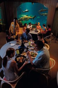 Allergen-Free Dining Options at SeaWorld Parks & Entertainment