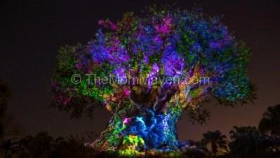 New Summer Fun at Walt Disney World