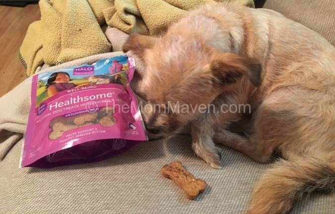 Dog Treats Made From Canned Sweet Potatoes