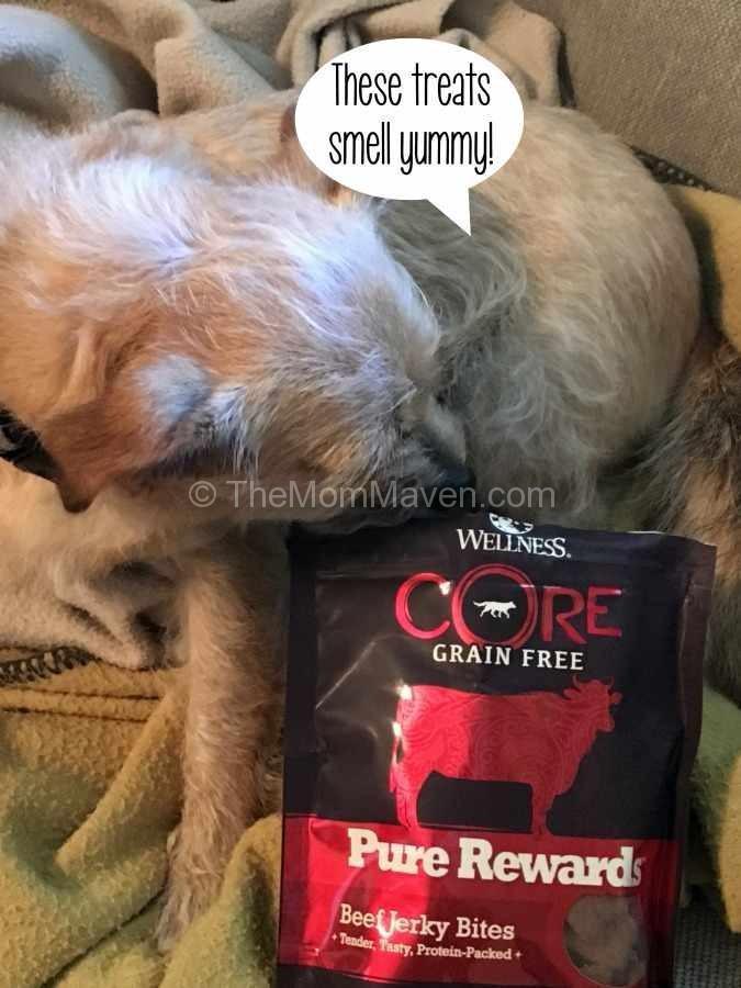 Wellness Core Grain Free Indoor Cat Food