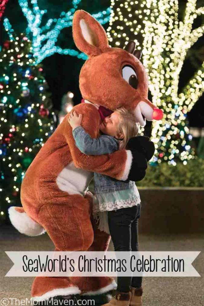 You can meet Rudolph and Friends at SeaWorld's Christmas Celebration in 2016!