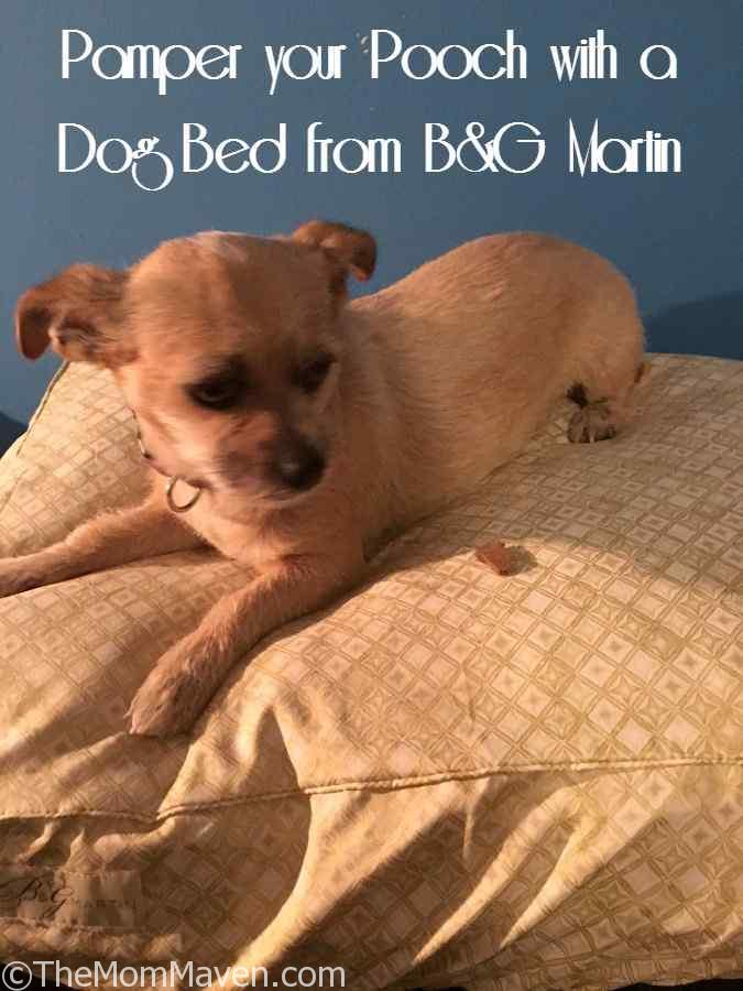 Pamper your Pooch with a Dog Bed from B&G Martin