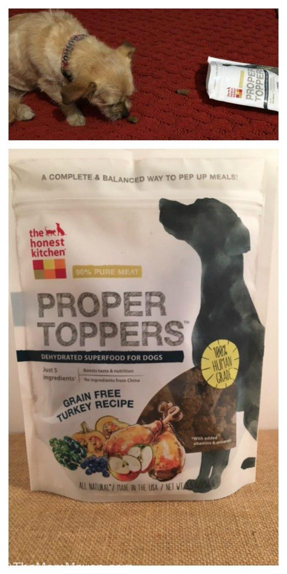 Dog Food Minerals Bbc