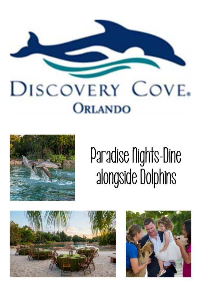 Discovery Cove is offering a brand new nighttime experience that includes dinner, drinks, and a dolphin presentation. Guests can now choose from select evenings throughout 2018 to book Paradise Nights at Discovery Cove.