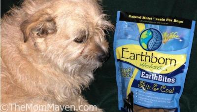 Earthborn Holistic EarthBites Skin & Coat Dog Treats