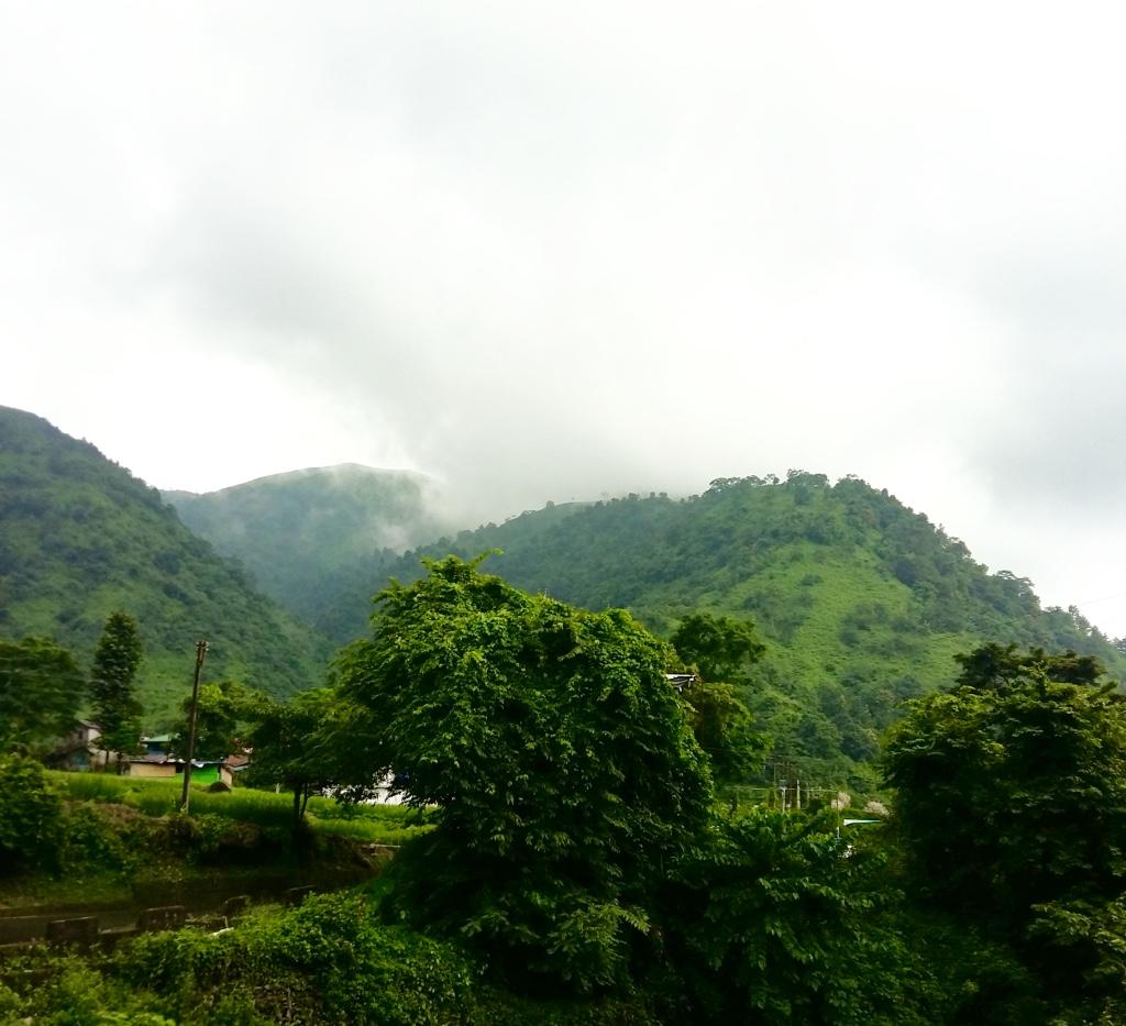 On the way to darjeeling