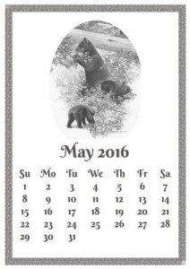 may-1333486_640-5jun16