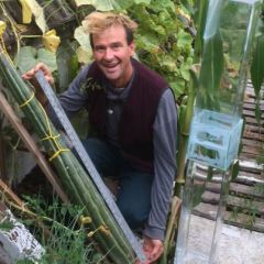 B.C. man says he has world's longest cucumber