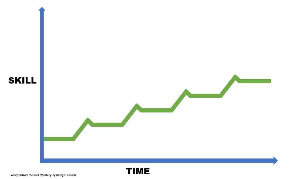 The Mastery Curve - real progress