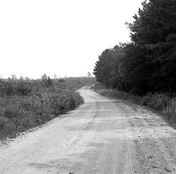 Lorenzo Dow Dirt Road