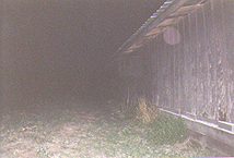 Ghost Orb in Lawrenceville, GA
