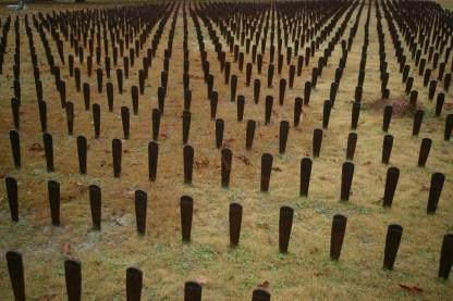 Central State Hospital Graves Representation, Milledgevile GA