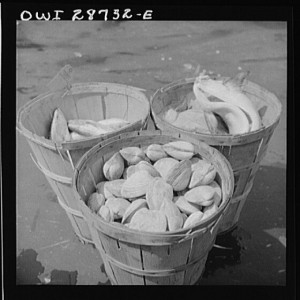 New York, New York. Baskets of seafood at the Fulton fish market