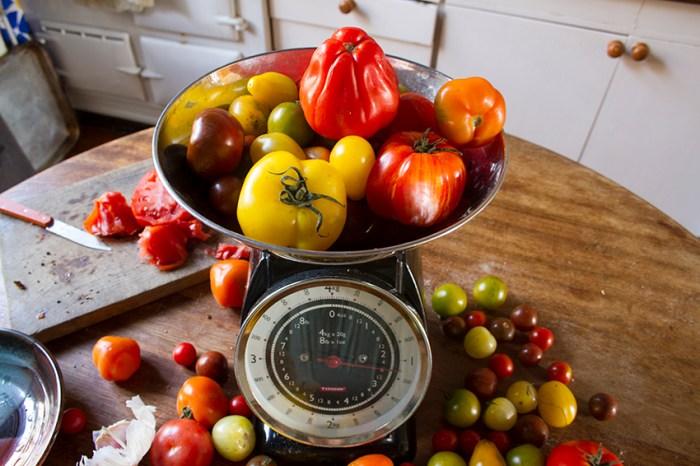 Tomato_Salad7