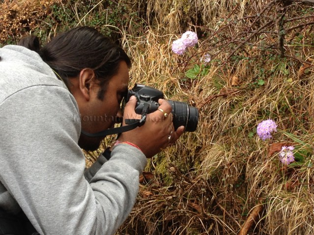 This is a 2016 photograph of The Mountain Walker COO, Ameen Shaikh, engrossed in clicking close-up photos of flora enroute a hike to Shaali Tibba.