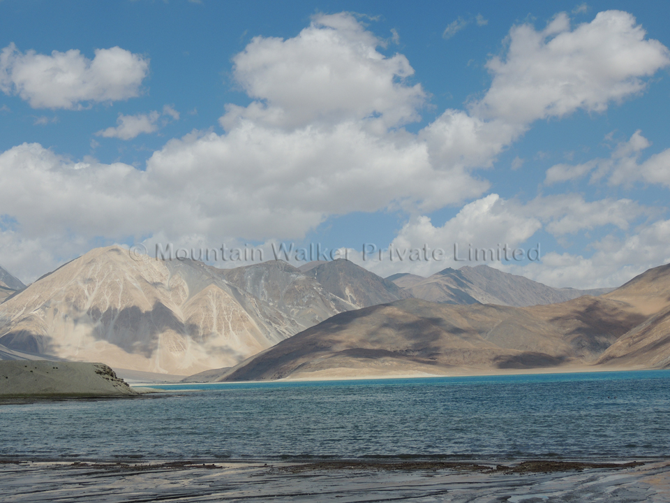 Experience peace as the brain waves synchronize with those of the Pangong Tso; Photo: Abhishek Kaushal