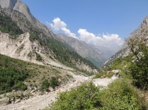 Different shades of the Gangotri valley: trees, river, grass, bushes, rocks and some high peaks; Photo: Abhishek Kaushal