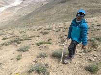 The Little Mountain Walker, Upamanyu Mukherjee, on the Kunzum La-Chandratal trek at around 4600 metres above sea-level.