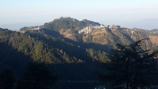 wm-good-morning-shimla