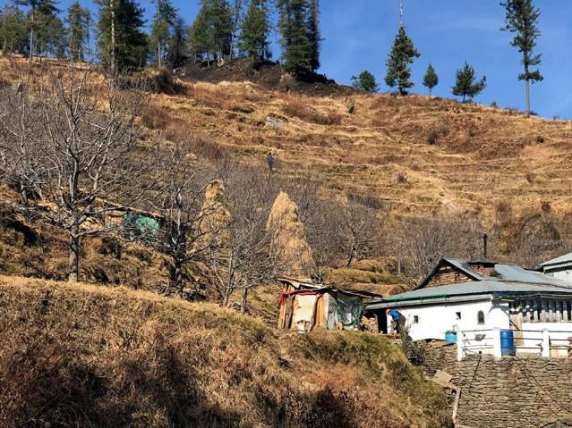 wm-headed-back-to-shimla-01
