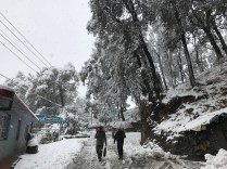 Life goes but in snow-motion in Shimla; Photo: Abhinav Kaushal