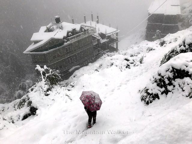wm-white-as-snow-04