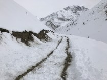 The road after our attempt to get the car moving again; Photo: Abhinav Kaushal
