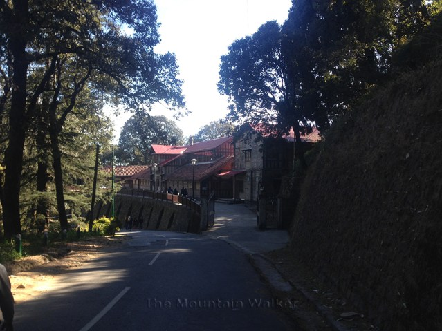Shimla Walking 02