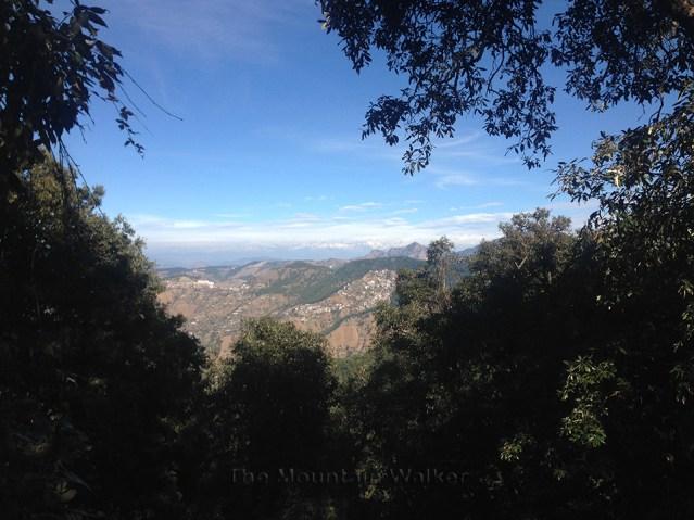 Shimla Walking 06