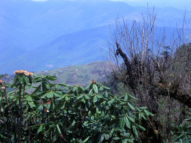 WM Anusha Arunachal Tryst 01