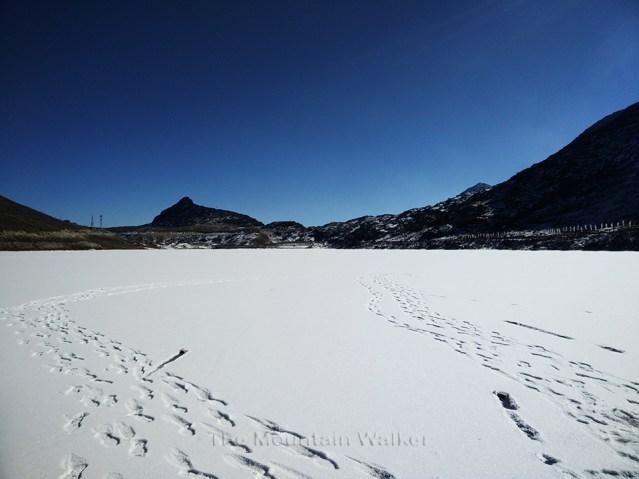 WM Bumla Pass 01