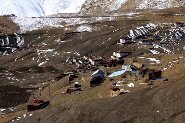WM Hikkim Postcards 06